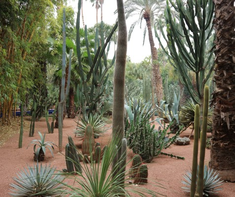 La Jardin Majorelle
