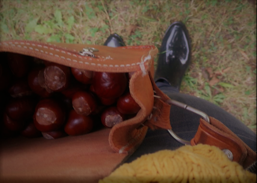 Kastanien, Handtasche, Herbstoutfit, Kastaniensammeln